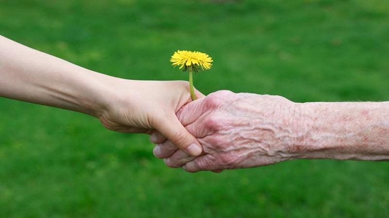 خدمات مشاوره سالمندان